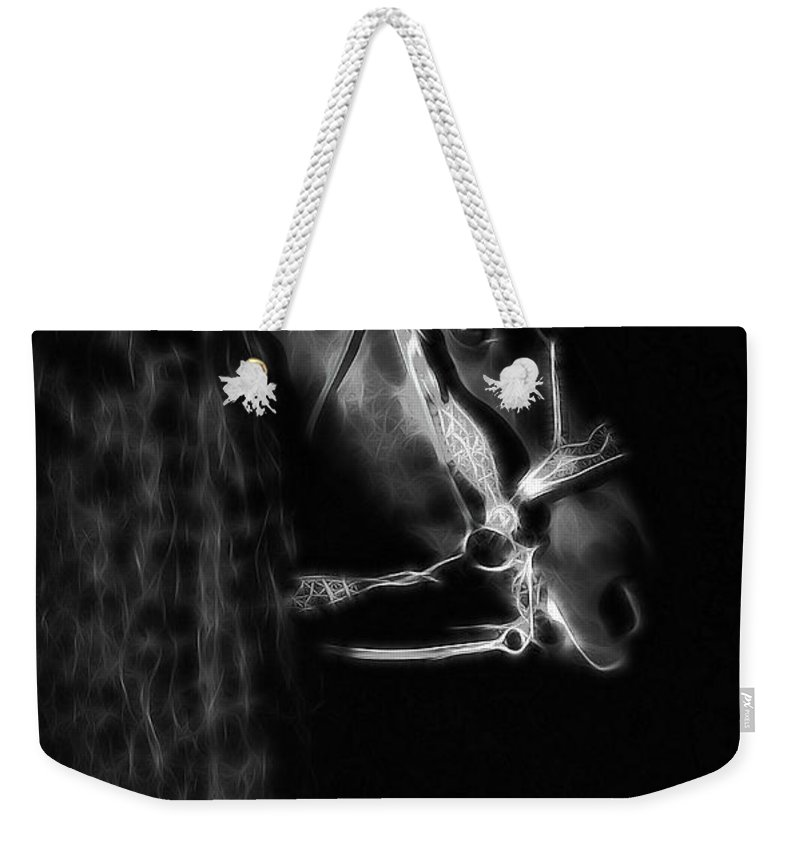 Friesians Weekender Tote Bag featuring the photograph Freisian Shadow by Athena Mckinzie