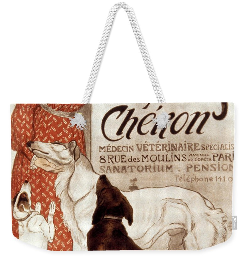 1894 Weekender Tote Bag featuring the photograph French Veterinary Clinic by Granger