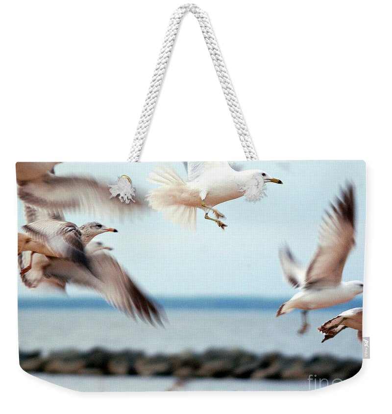 Clay Weekender Tote Bag featuring the photograph Frenzy by Clayton Bruster
