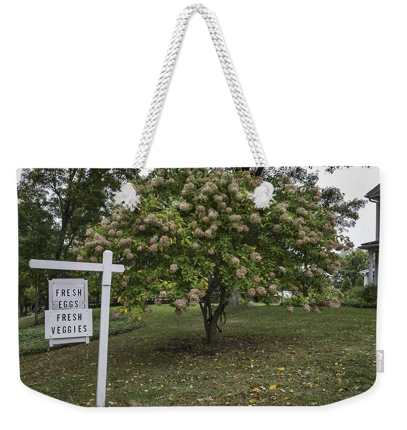 Rural Weekender Tote Bag featuring the photograph Fresh Eggs by Fran Gallogly