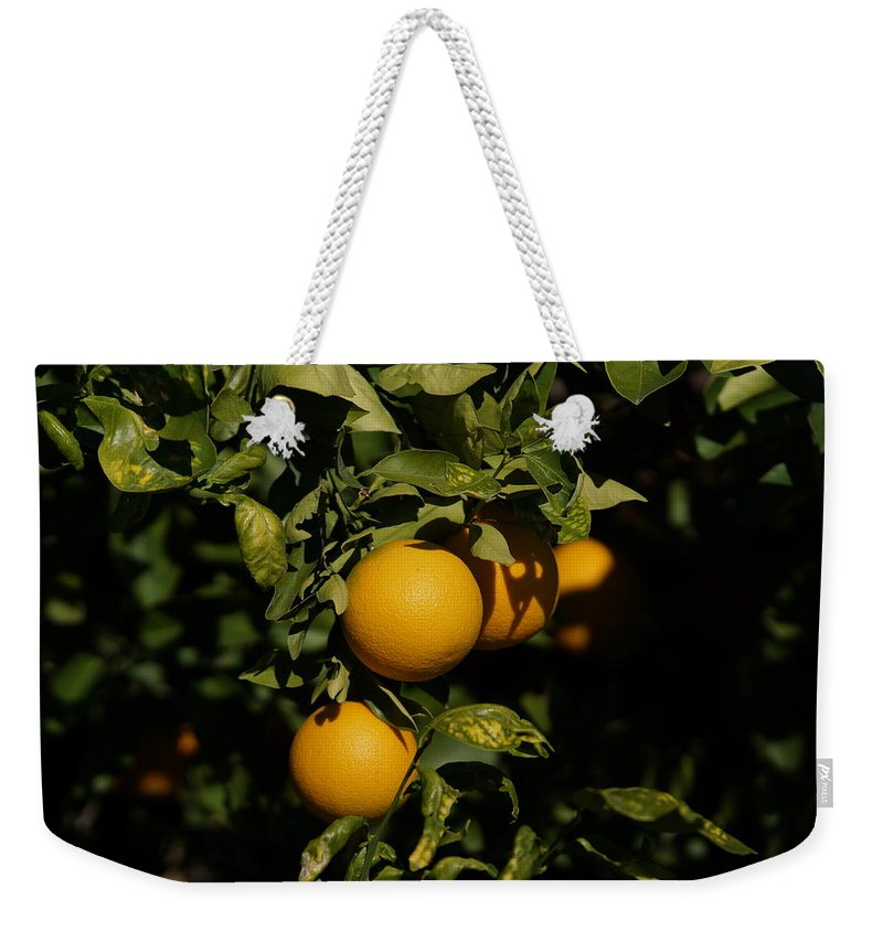 Oranges Weekender Tote Bag featuring the photograph Fresh Oranges by Ernie Echols