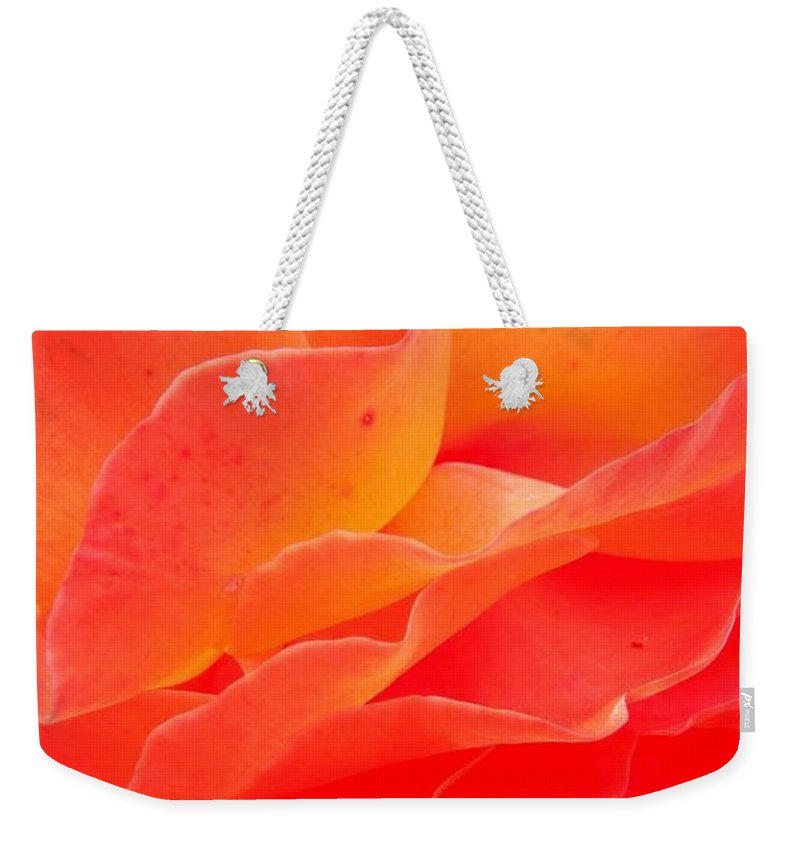 Flower Weekender Tote Bag featuring the photograph Friendship by Juergen Weiss
