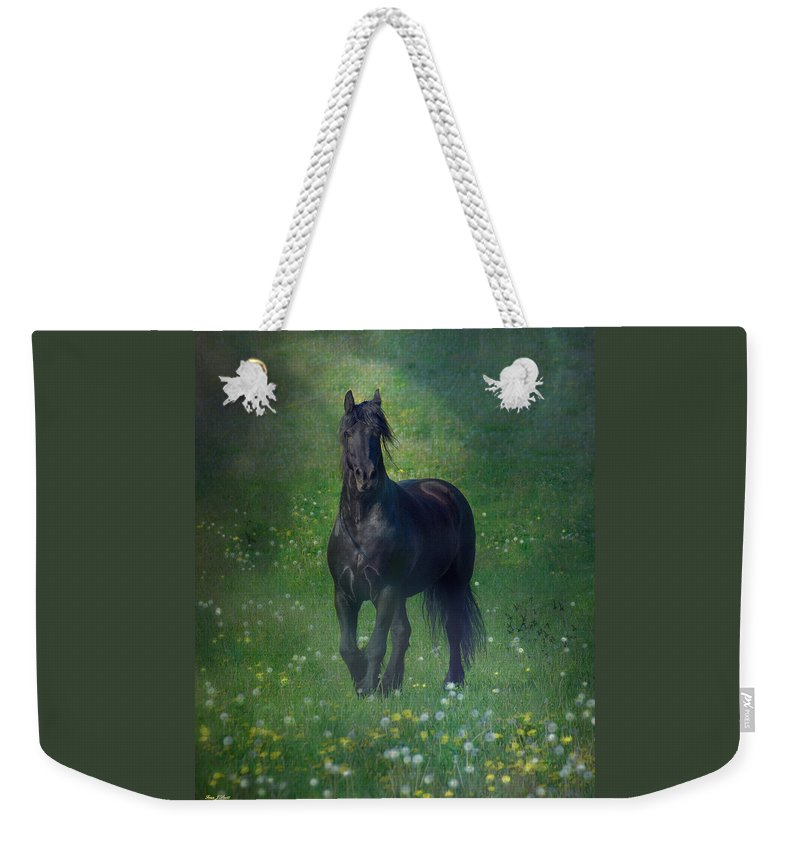 Horses Canvas Prints Weekender Tote Bag featuring the photograph Friesian Mist by Fran J Scott