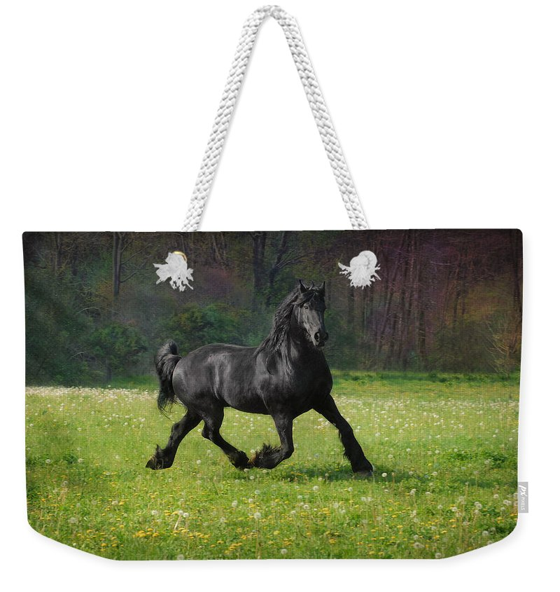 Friesian Weekender Tote Bag featuring the photograph Friesian Power by Fran J Scott