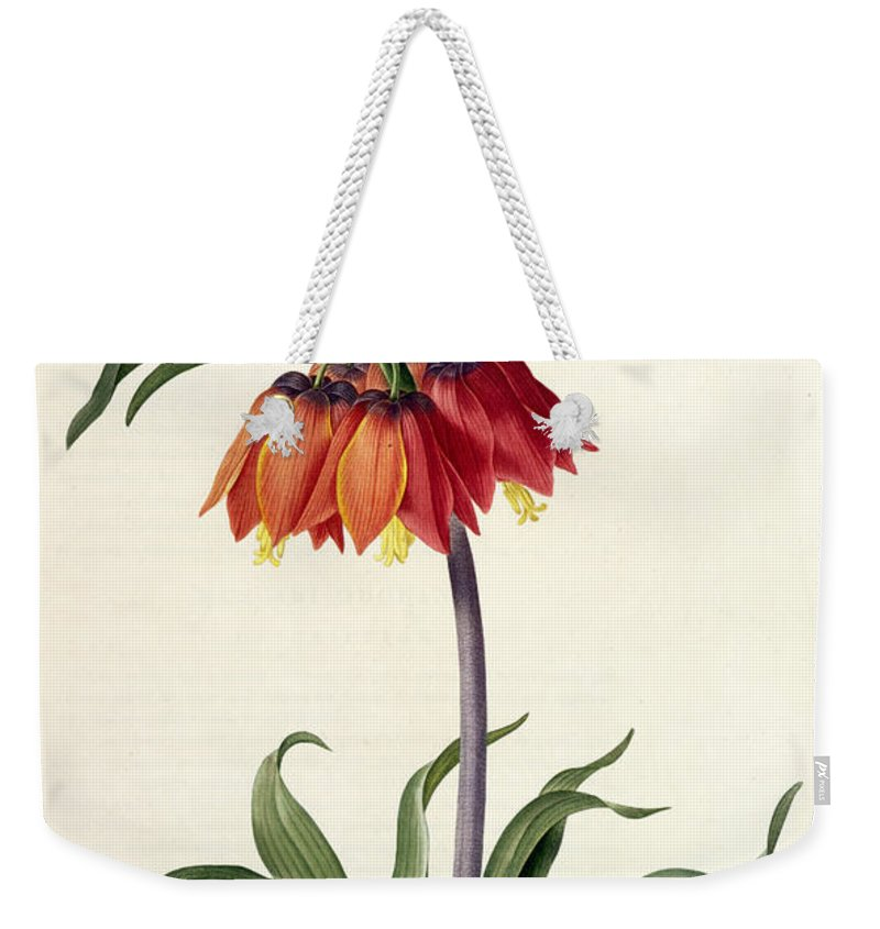 Fritillaria Weekender Tote Bag featuring the drawing Fritillaria Imperialis by Pierre Joseph Redoute