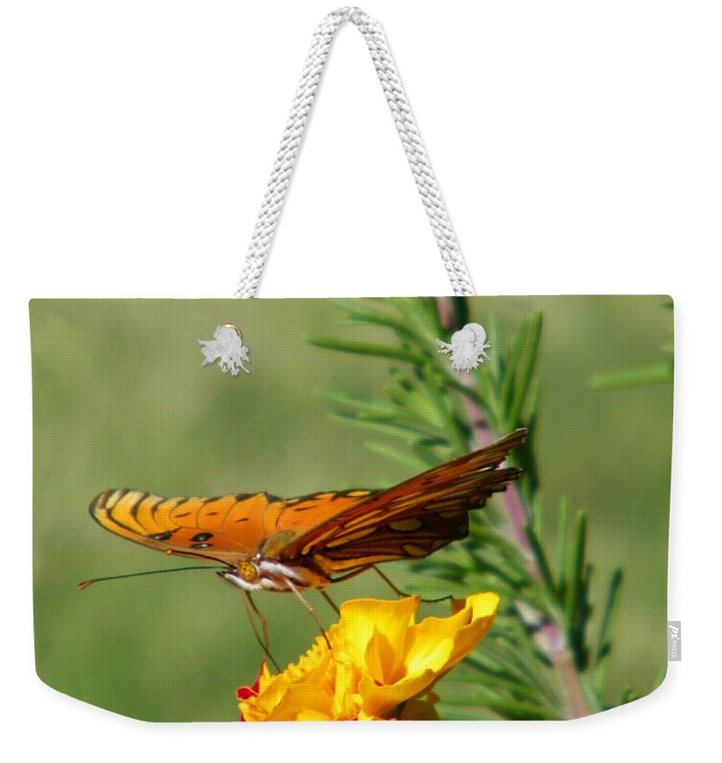 Fritillary Weekender Tote Bag featuring the photograph Fritillary Flitterby by Gale Cochran-Smith