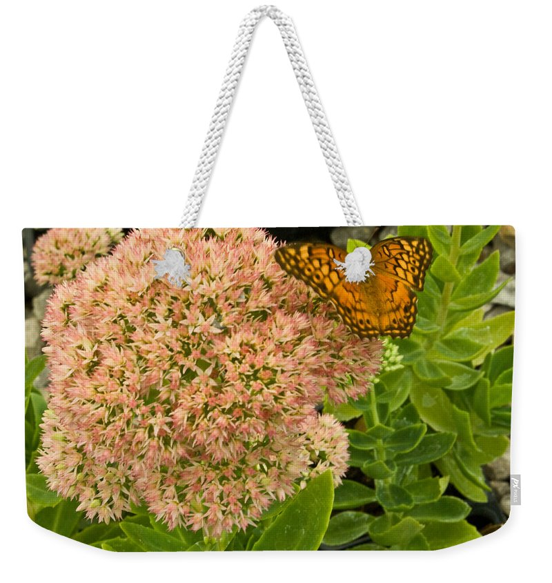 Fritillary Weekender Tote Bag featuring the photograph Fritillary On Flower by Douglas Barnett