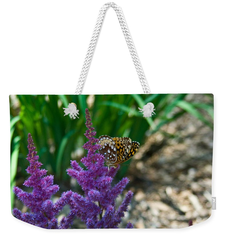 Butterfly Weekender Tote Bag featuring the photograph Fritllary Butterfly On Astilbe by Douglas Barnett