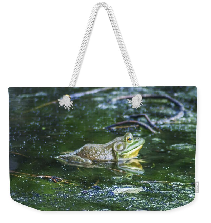 Frog Weekender Tote Bag featuring the photograph Frog In A Pond by Bill Cannon