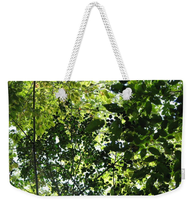 Leaf Weekender Tote Bag featuring the photograph From Above by Stacey May