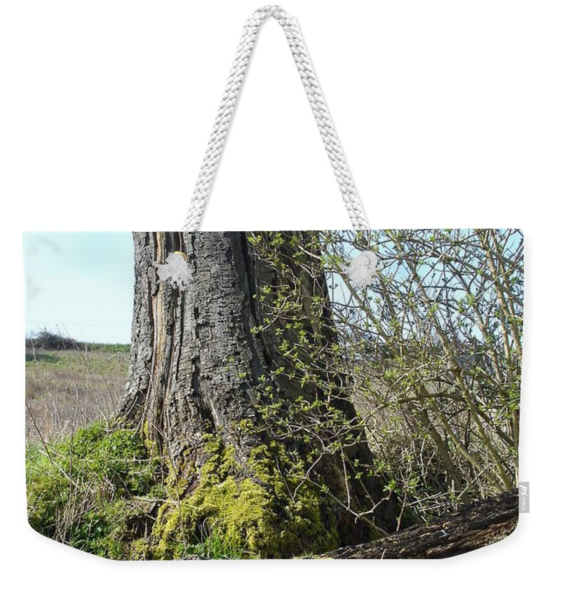 Tree Weekender Tote Bag featuring the photograph From Old Springs New by Susan Baker