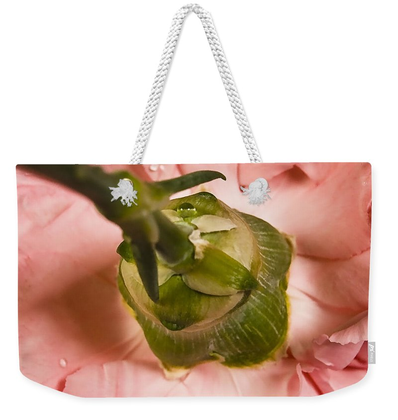 Arrangement Weekender Tote Bag featuring the photograph From... by Svetlana Sewell
