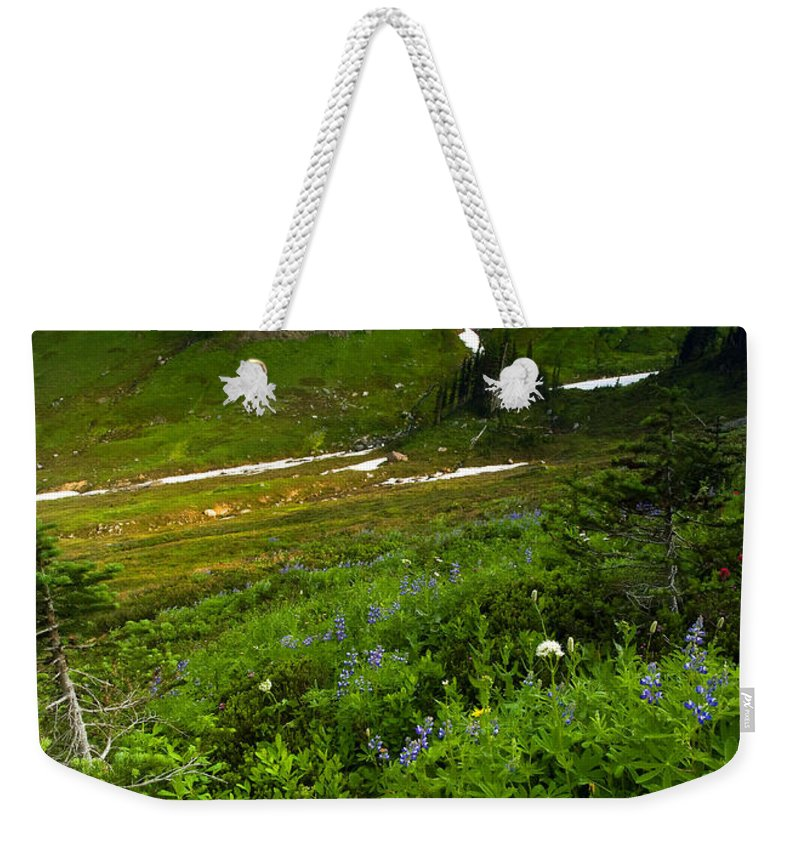 Rainier Weekender Tote Bag featuring the photograph From The Top by Mike Dawson