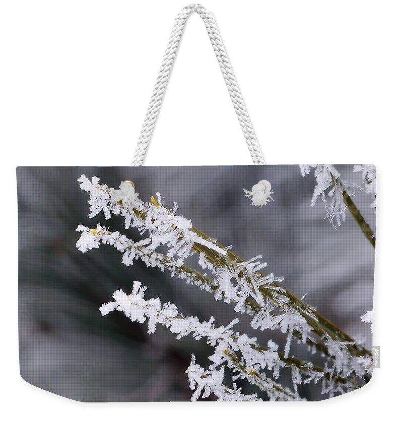 Macro Weekender Tote Bag featuring the photograph Frost by Lauren Radke