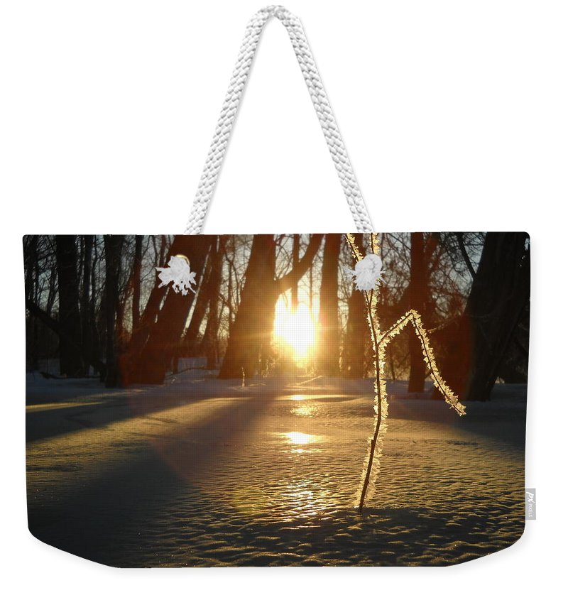 Sunrise Weekender Tote Bag featuring the photograph Frost On Sapling At Sunrise by Kent Lorentzen
