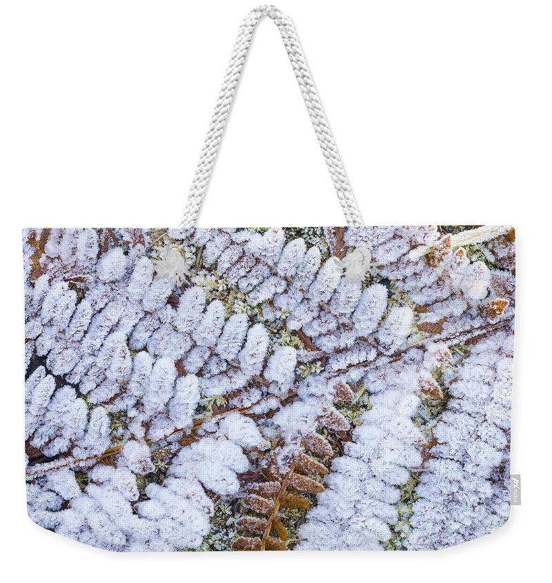 Autumn Weekender Tote Bag featuring the photograph Frosted Fern by John Trax
