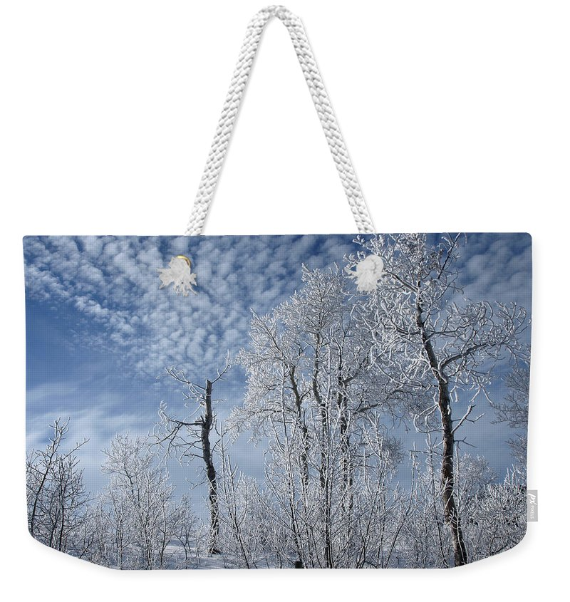 Landscape Weekender Tote Bag featuring the photograph Frosted Hilltop Quakies by DeeLon Merritt
