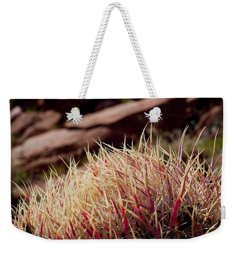 Barrel Cactus Weekender Tote Bag featuring the photograph Frosted Tips by Kelley King