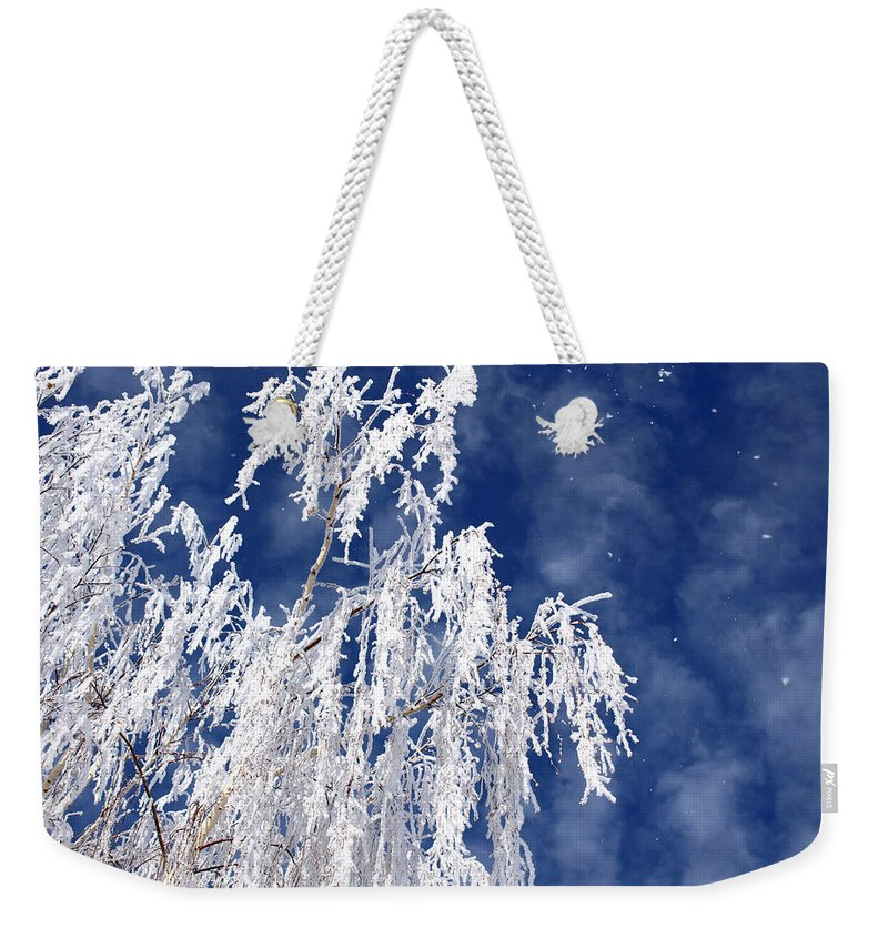 Willow Weekender Tote Bag featuring the photograph Frosted Weeping Willow by DeeLon Merritt