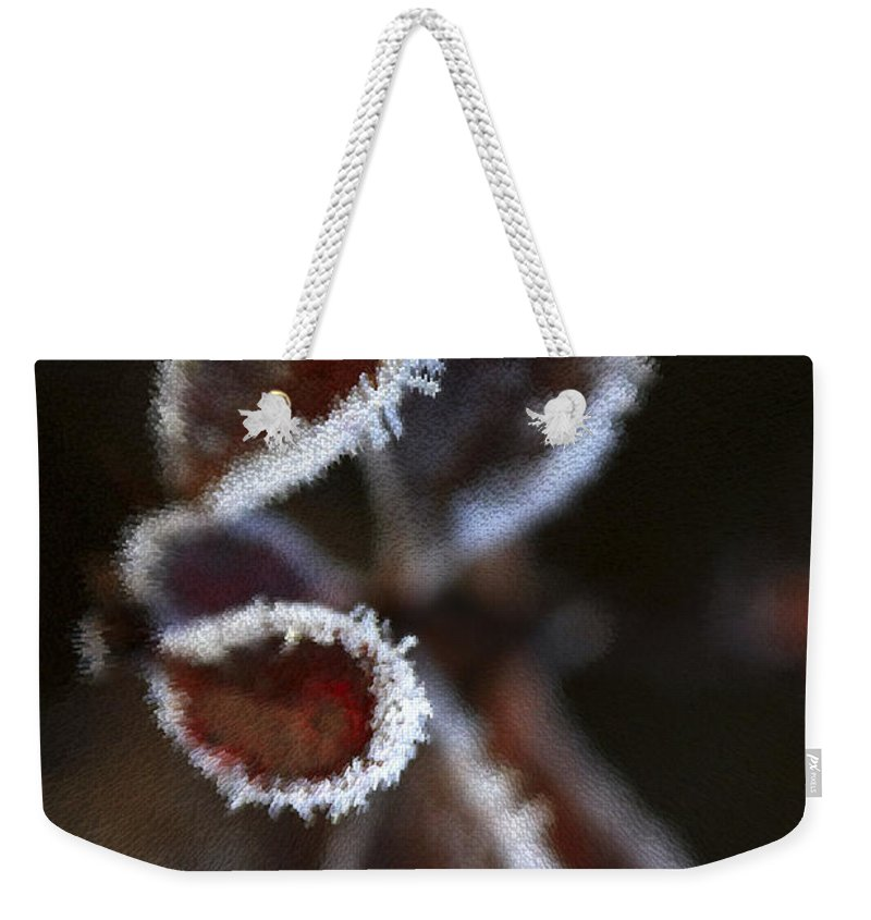 Frost Weekender Tote Bag featuring the photograph Frosty Leafs by Deborah Benoit