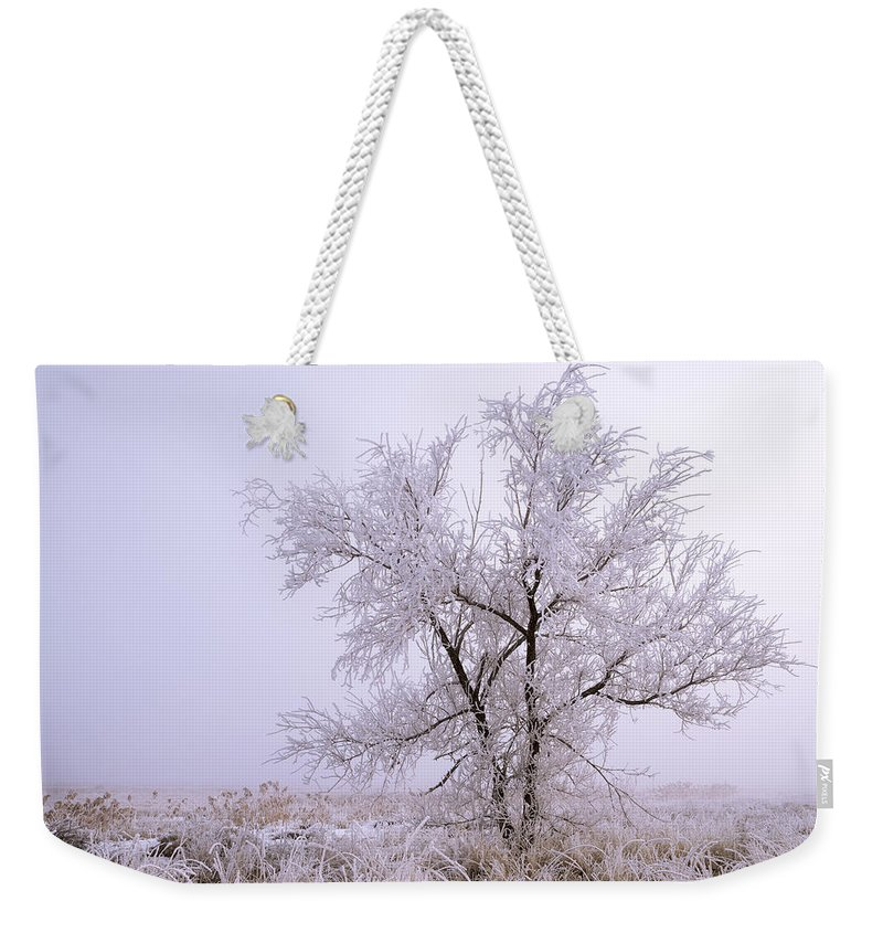 Frozen Ground Weekender Tote Bag featuring the photograph Frozen Ground by Chad Dutson