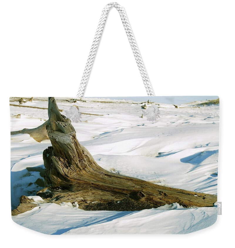 Snow Weekender Tote Bag featuring the photograph Frozen Shores by Michael Peychich
