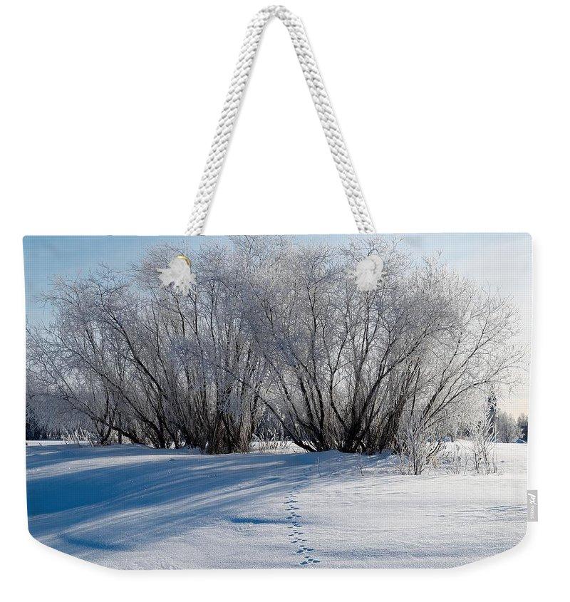 Talvi Weekender Tote Bag featuring the photograph Frozen Views 4 by Jouko Lehto