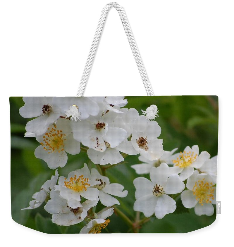 Weekender Tote Bag featuring the photograph Fruity Potential by David Lane