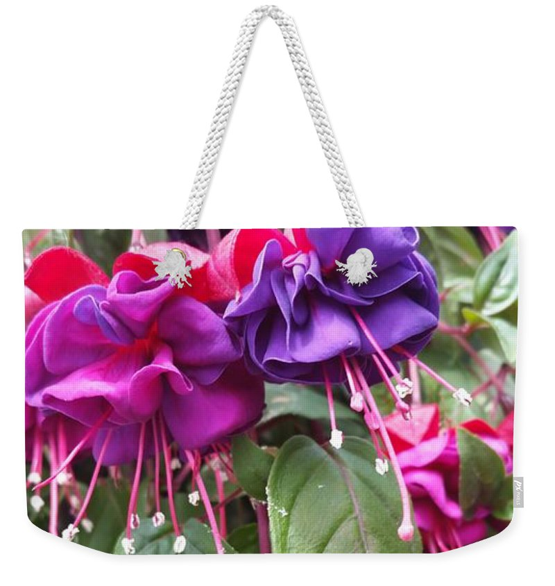 Fuchsia Flowers Spring Weekender Tote Bag featuring the photograph Fuchsia by Valerie Josi