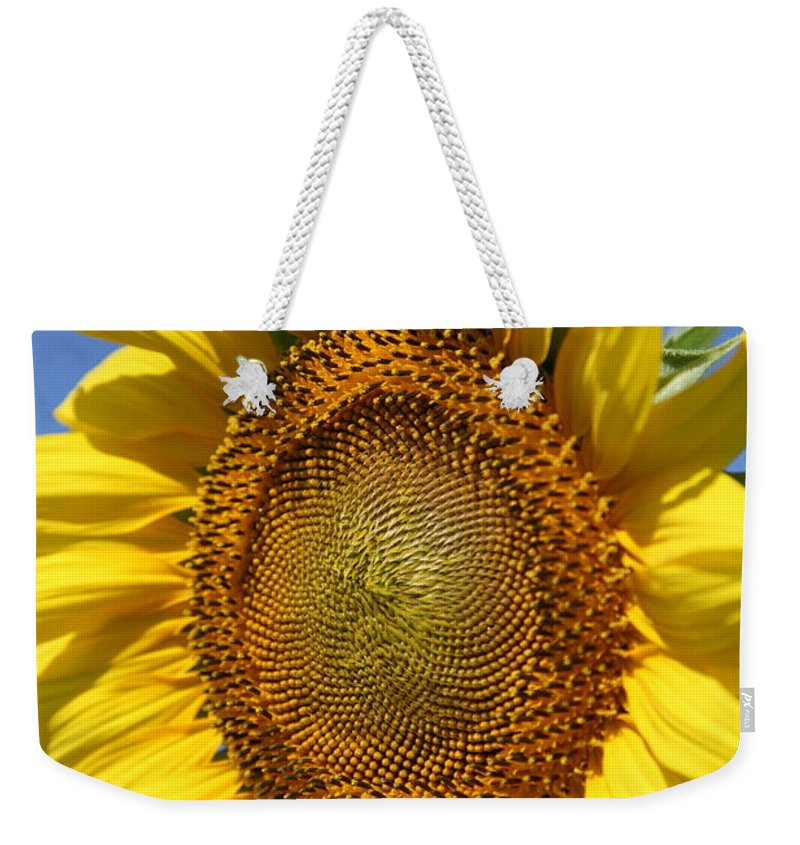 Sunflowers Weekender Tote Bag featuring the photograph Full by Amanda Barcon