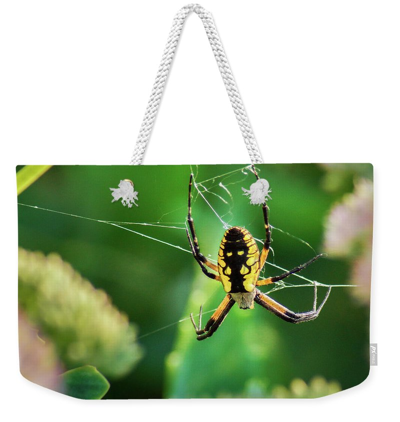 Argiope Weekender Tote Bag featuring the photograph Full Body Tattoo by Bill Pevlor