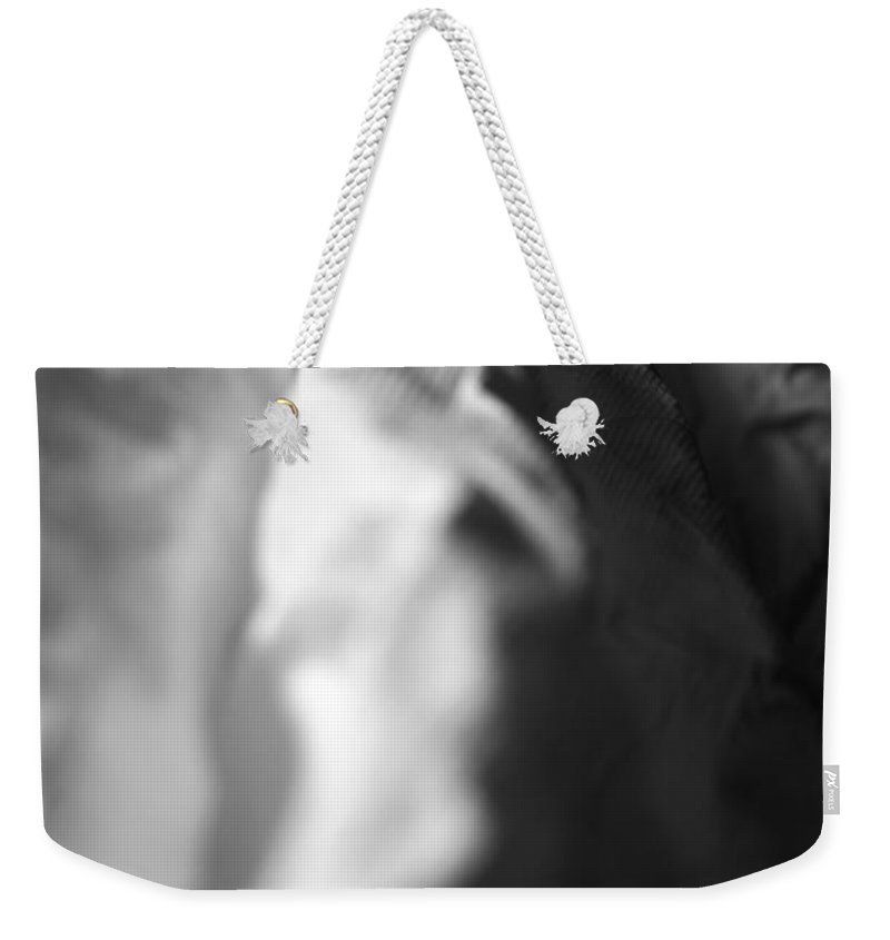 White Weekender Tote Bag featuring the photograph Full Of Empty Series - Paths by Amanda Barcon