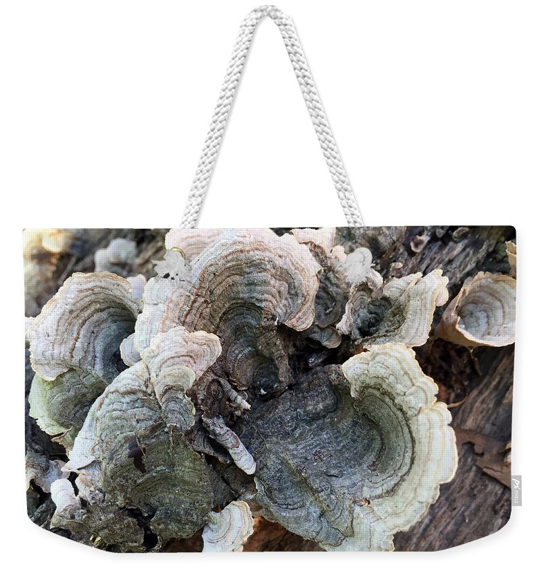 Fungus Weekender Tote Bag featuring the photograph Fungus by James Pinkerton
