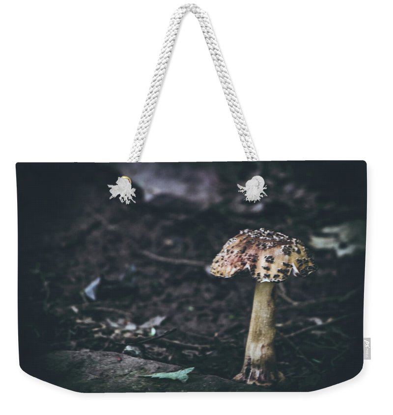 Mushroom Weekender Tote Bag featuring the photograph Fungus by Patricia Mast