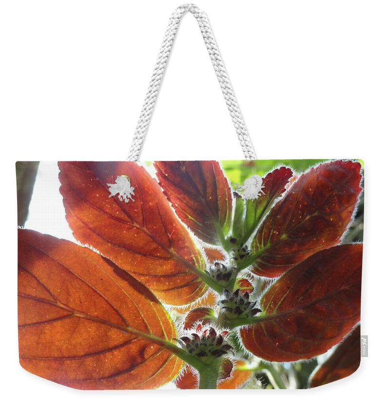 Red Weekender Tote Bag featuring the photograph Furry Flora 2 by Trish Hale