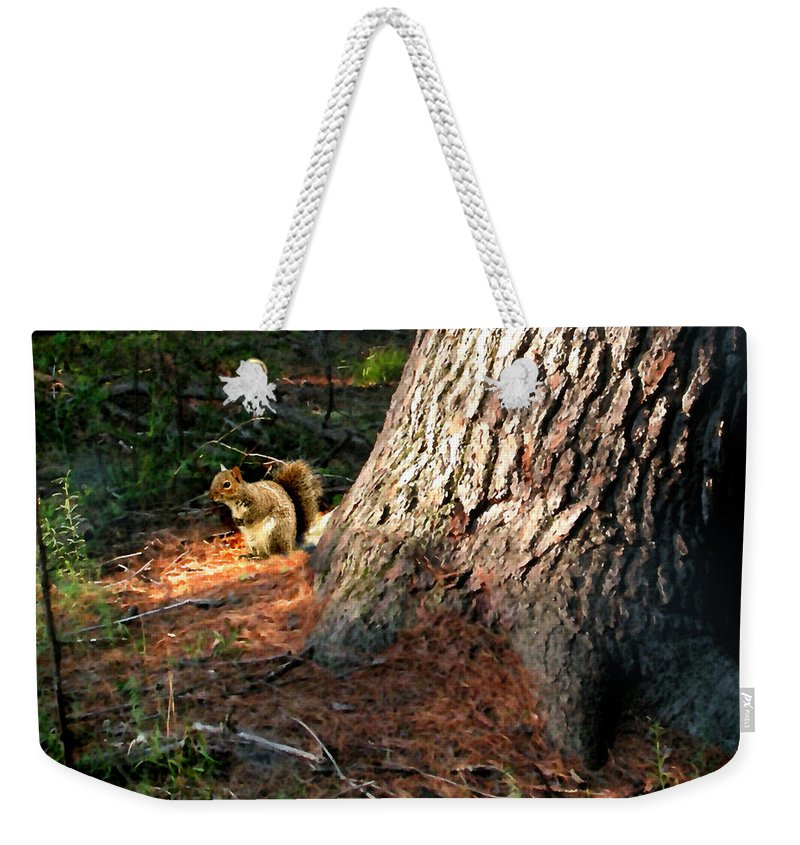 Squirrel Weekender Tote Bag featuring the painting Furry Neighbor by Paul Sachtleben