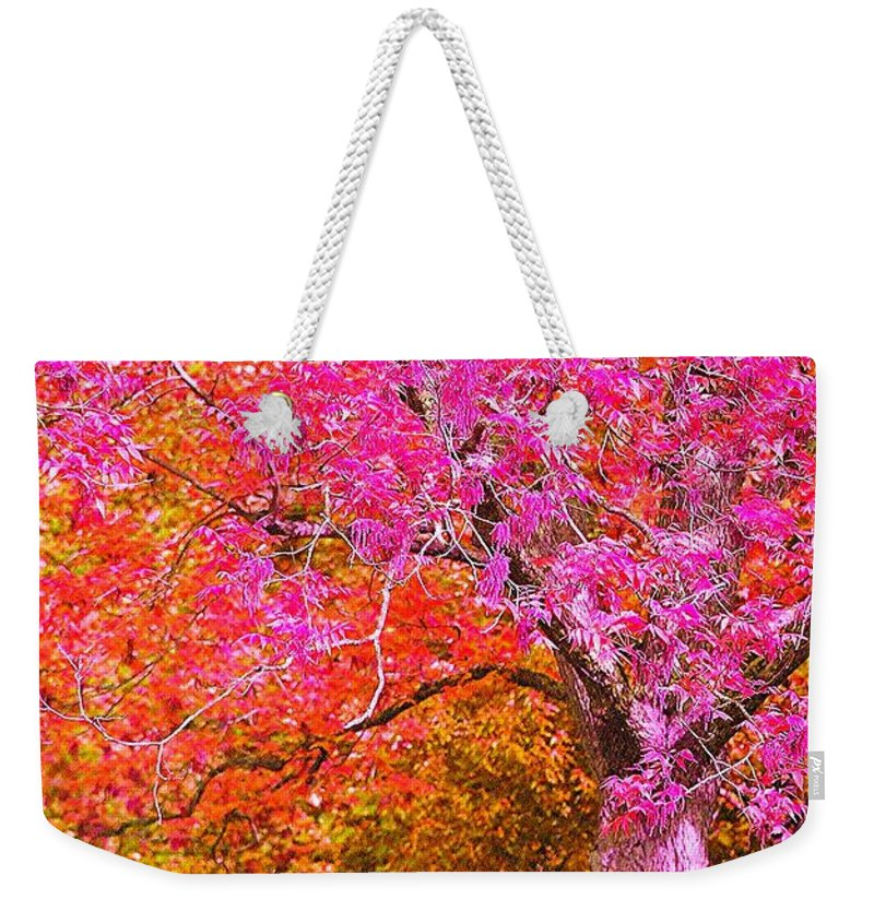 Fuschia Weekender Tote Bag featuring the photograph Fuschia Tree by Nadine Rippelmeyer