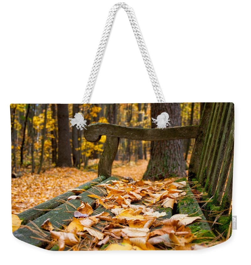 Nature Weekender Tote Bag featuring the photograph Future Home Of An Aspiring Artist by Mike Smale