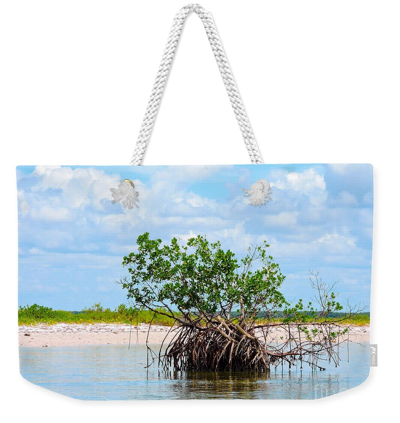 Mangrove Tree Weekender Tote Bag featuring the photograph Future Island by Marilee Noland