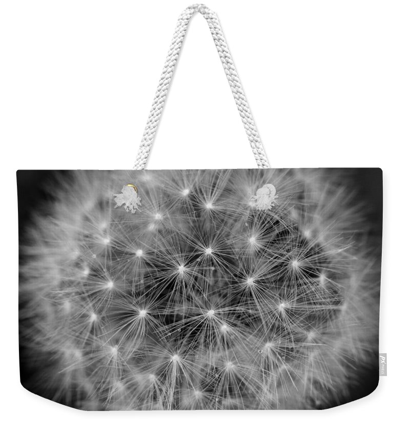 Dandelion Weekender Tote Bag featuring the photograph Fuzzy - Black And White by Angela Rath