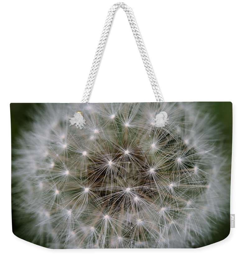 Dandelion Weekender Tote Bag featuring the photograph Fuzzy by Angela Rath