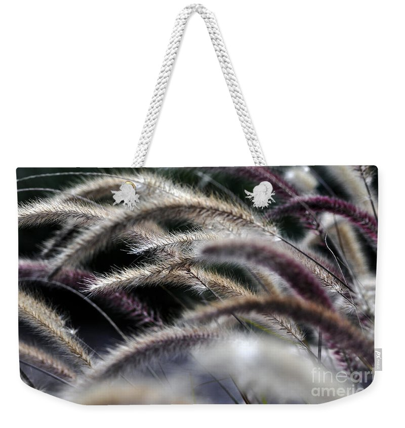 Clay Weekender Tote Bag featuring the photograph Fuzzy by Clayton Bruster
