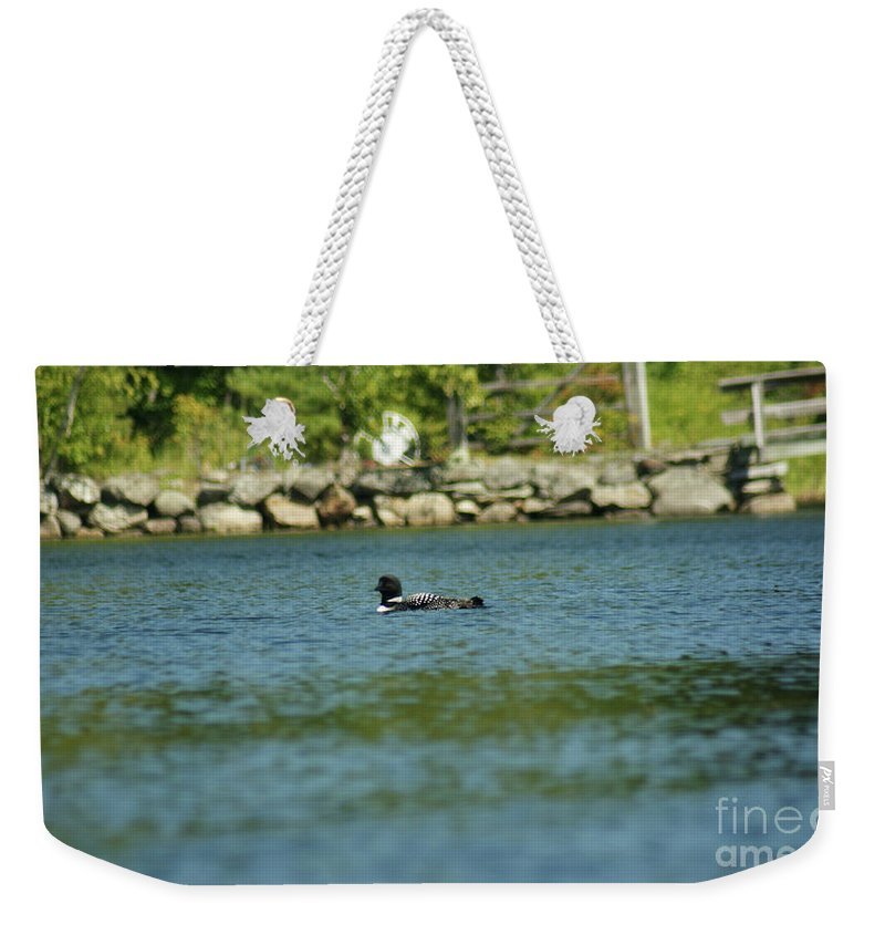 Common Loon Weekender Tote Bag featuring the photograph Fuzzy Dew by Judy Carr