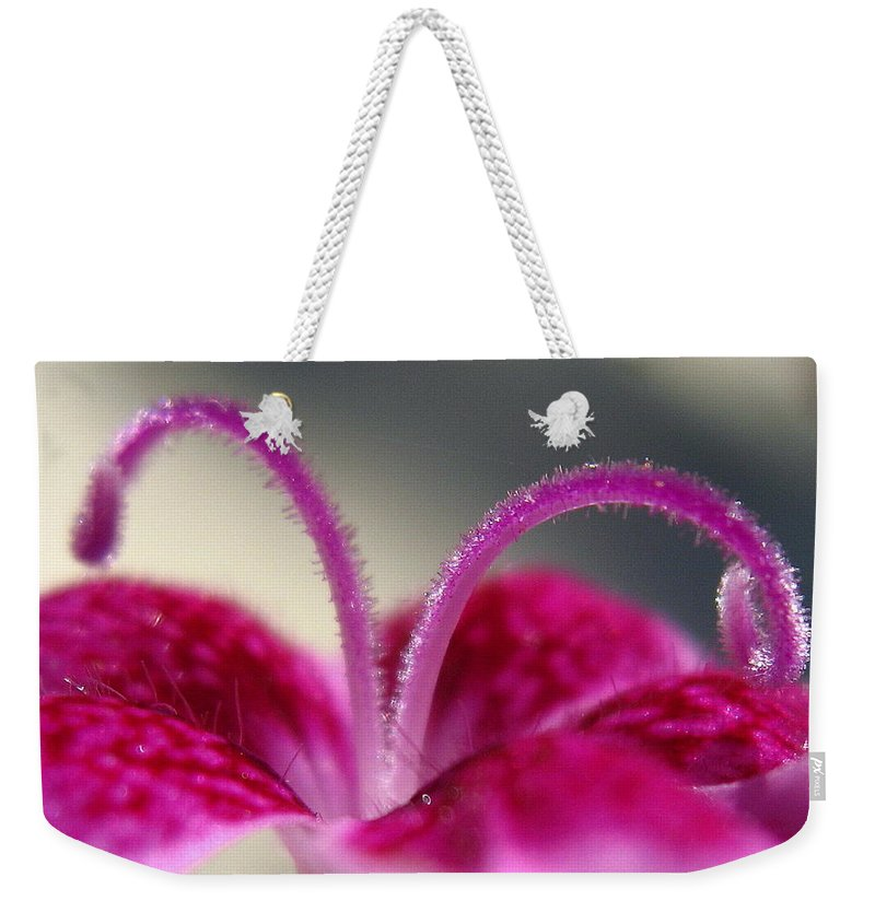 Dianthus Weekender Tote Bag featuring the photograph Fuzzzzz by Marla McFall