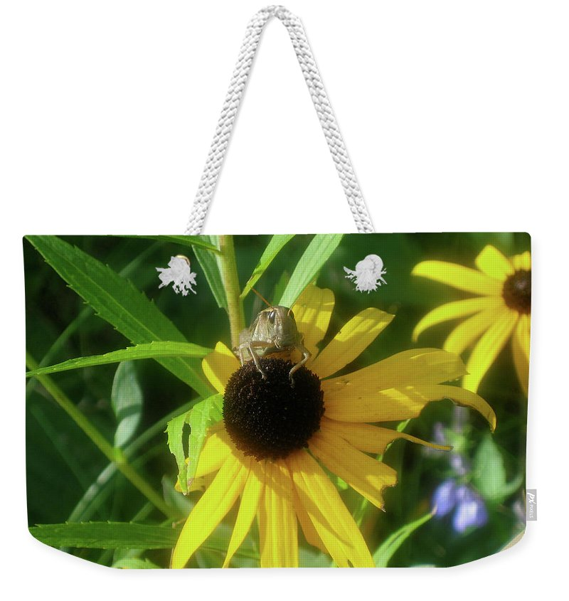 Grasshopper Weekender Tote Bag featuring the photograph Garden Buffet by Cheryl O'Neil