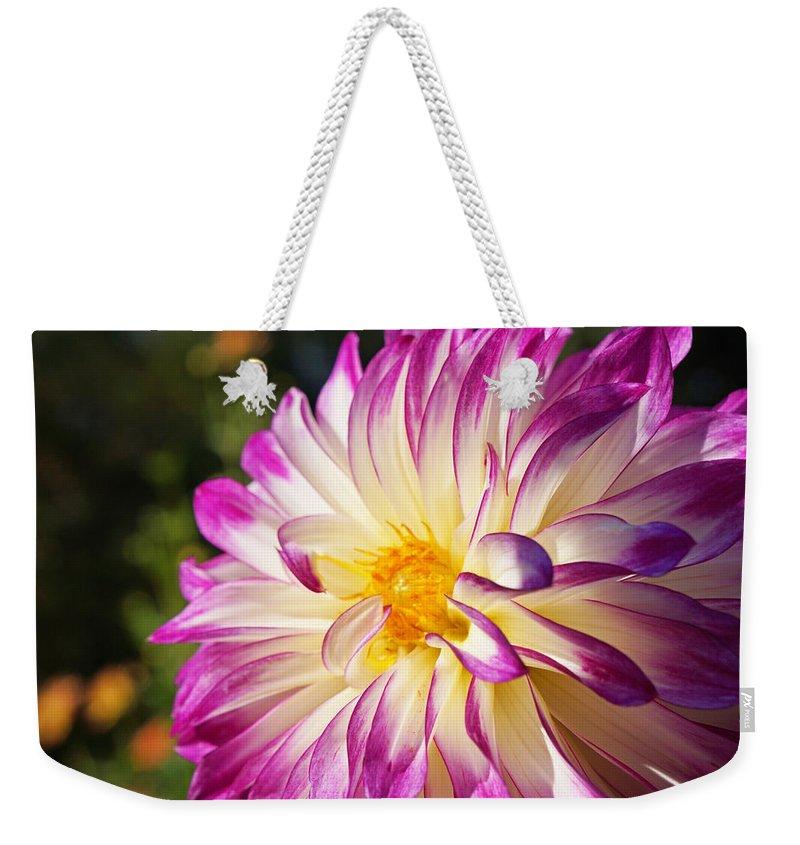 Green Weekender Tote Bag featuring the photograph Garden Dahlia Flower Fine Art Prints by Patti Baslee