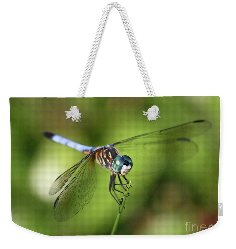 Dragonfly Weekender Tote Bag featuring the photograph Garden Dragonfly by Carol Groenen