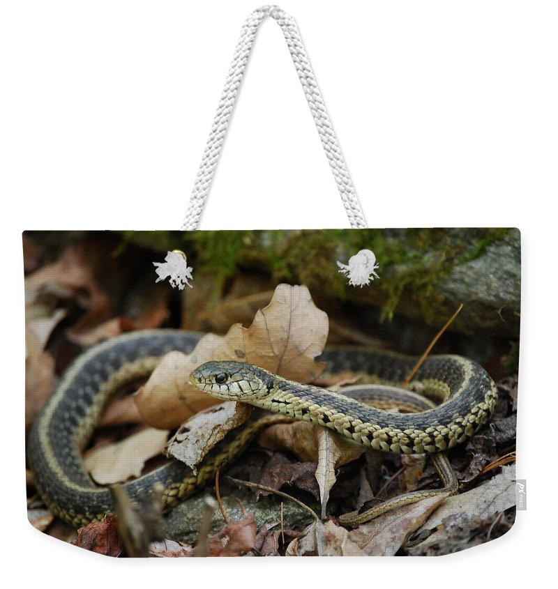 Snake Weekender Tote Bag featuring the photograph Garter Snake by Eric Liller