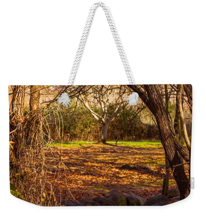 Landscape Weekender Tote Bag featuring the photograph Gates To Paradise by Mark Perelmuter