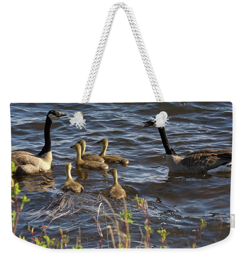 Canadian Geese Weekender Tote Bag featuring the photograph Gather Up by Linda Kerkau